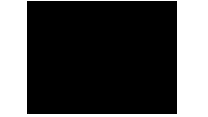 BZerk Multimedia Logo